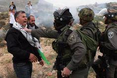 19/12/14 Israeli Occupation brutally arrest Muhammad Khatib today in Turmus Ayya, #Palestine