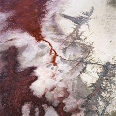 rust + bone--David Maisel--The Lake Project