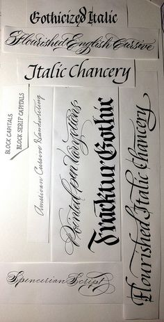 calligraphy stiles by Barbara Calzolari, via Flickr