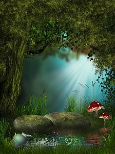 Magic Forest Backdrop For Photography Dreamlike Woods Tree Grass Mushroom Stone Outdoor Fairy Tale Background Photo Studio Props K Fantasy Art Landscapes, Fantasy Landscape, Fantasy Background, Background Images, Fantasy Places, Fantasy World, Photo Backgrounds, Green Backgrounds, Mystical Forest