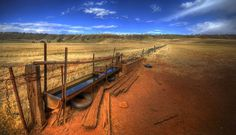 Lifeline. Rural South Australia - taken a few years ago during the worst drought in 100 years.  The water trough is a lifeline to the few lean sheep that departed as I approached.