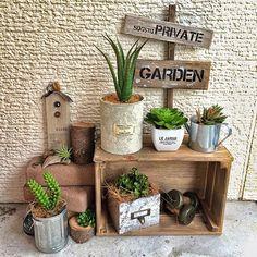 Plant Design, Garden Design, Garden Junk, Miniature Rooms, Wooden Decor, Diy Arts And Crafts, Garden Crafts, Diy Wood Projects, Succulents Garden
