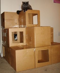 Fort Kitten! I actually did this behind our couch to prevent the cats from getting inside our couch and it WORKED! I just collected boxes for awhile that were the correct size and then I taped them closed tight. The top layer has open boxes with spots for the cats to go sleep or play or hide in.