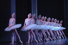 Ballet - Le Lac des cygnes » Corsevent