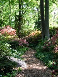 30 Most Wonderful Forest Garden Design Ideas - garden paths Forest Garden, Woodland Garden, Garden Paths, Forest Path, Garden In The Woods, Path Design, Landscape Design, Design Ideas, Beautiful Landscapes
