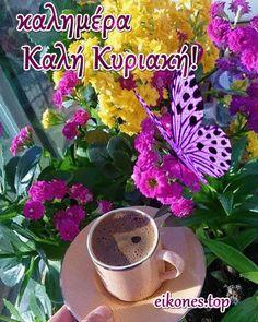 Καλημέρα με χαμόγελα καλή Κυριακή σε όλους! eikones top GIFs Kαλημέρα - Good Morning Cards, Very Nice Pic, Greek Language, Beautiful Pink Roses, Happy Day, Mornings, Collection, Flower Template, Plants