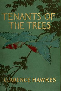 Tenants of the trees, by Clarence Hawkes, 1907