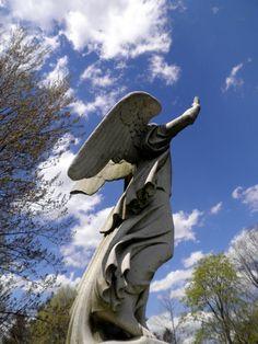 At Mount Auburn Cemetery.