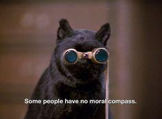 cartoon memes Sabrina the Teenage Witch Cartoon Memes, Cat Memes, Funny Memes, Salem Sabrina, Sabrina Cat, Salem Cat, Salem Saberhagen, Archie Comics, Film Quotes