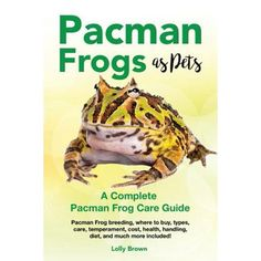 Pacman Frog, Frog Species, Create A Cartoon, Pet Frogs, Kermit The Frog, Frog And Toad, Reptiles And Amphibians, Pac Man, Diet