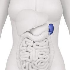 Doorbraak Stamcelonderzoek síntomas de diabetes