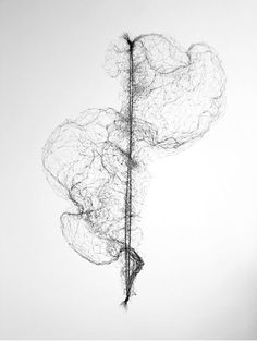 Susie MacMurray | Stretched Hairnet no.1 2011 | pen drawing