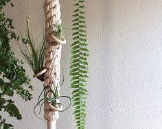 Suspensión de Airplant de macrame   Macrame colgante Maceta para plantas de aire   Colgante de pared de macrame   Escultura de macrame   Decoración para el hogar   Decoración Bohemia