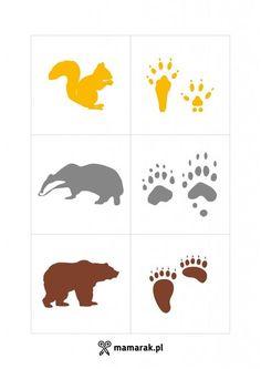 gra Preschool Education, Preschool Science, Preschool Lessons, Kindergarten Activities, Animal Footprints, Wild Animals Pictures, File Folder Activities, Montessori Practical Life, Animal Tracks