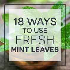 #18 ways to use fresh mint leaves