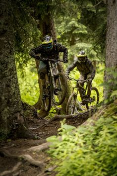 Learning to ride a bike is no big deal. Learning the best ways to keep your bike from breaking down can be just as simple. Downhill Bike, Mtb Bike, Cycling Bikes, Road Bike, Rollers, Montain Bike, Mtb Trails, Bike Engine, Bike Photography