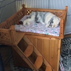 Playtime Fort for Rabbits (Best-Seller) - Wooden Fort for Pet Bunnies & Rabbits Diy Bunny Cage, Diy Bunny Toys, Bunny Cages, Diy Bunny Hutch, Cages For Rabbits, Diy Toys For Rabbits, Rabbit Toys, Pet Rabbit, House Rabbit