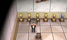 My new trophy room.