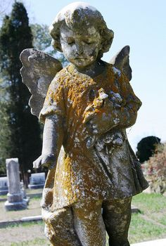 Marker- Cemetery Angel (Red Algae Closeup by Jenni P McD). http://www.thefuneralsource.org/cemoh.html
