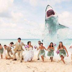 Cute wedding ideas for a beach theme! | Wedding ideas | Pinterest ...