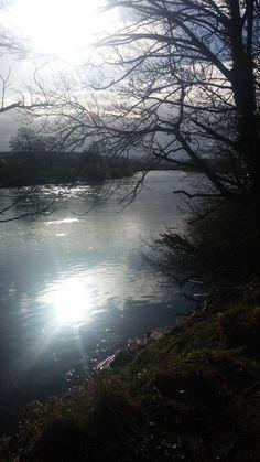 Corbridge River