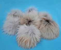327c8a8b046 269 Best Raccoon Pom Poms images in 2019