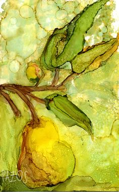 The Pear by Maria Pazos Alcohol Inks