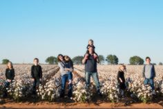 Moss Moments: cotton field.Found this on their blog.