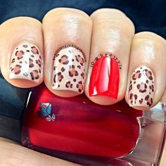 A #cheetah #manicure in Beige Bachelorette, Beige Dentelle, Chocolat Mordore, and Lovered by Bedizzle #LancomeLovesNails