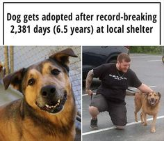 Faith In Humanity Restored - 19 Total Pictures