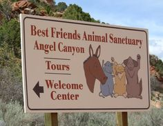Best Friends Animal Sanctuary does a phenomenal job rescuing and rehabilitating animals of all kinds.