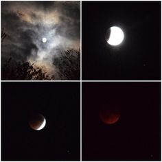 Blood Moon over the Ozarks! 9/27/15 The view in Missouri was spectacular! We sat out and watched from our backyard. This was a KY3 viewer's photos