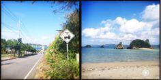 Mamlo Okinawa Trip 3