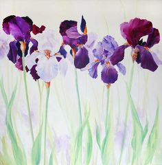 Judi Trevorrow Gallery | Landscape