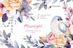 Moonlight Watercolor Collection