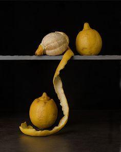 '' Three lemons'' by Tim Brill : Still life photography Fruit Photography, Still Life Photography, Fine Art Photography, Photography Ideas, Dutch Still Life, Still Life Art, Juan Sanchez Cotan, Classical Realism, Space Gallery