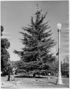 Holt Ave and Hunnington Blvd (1955) by 47specialdeluxe, via Flickr