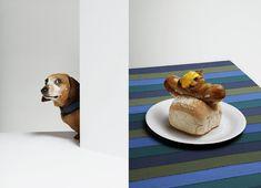 dog eat dog for Gourmand