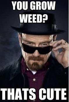 If you like 'Breaking Bad,' this post is for you (29 Photos)