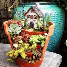 Fairy gardening at Calgo Gardens. http://calgogardens.com/