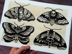 ORIGINAL · Moths · Traditional Tattoo Flash