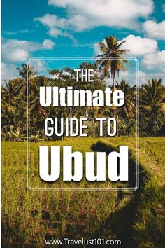 Check out this post to create the most epic Ubud itinerary for your next trip to Bali with insights on top things to do, where to eat, where to stay, & Bali Travel Guide, Solo Travel Tips, Travel Guides, Travel Advice, Travel Abroad, Asia Travel, Ubud Resort, Brunei, Cambodia