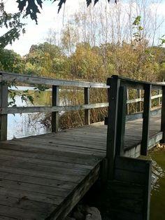 Bridges..