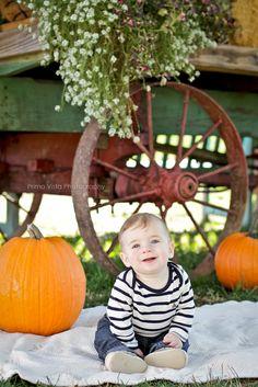 Fall, pumpkin, baby photo idea, cute baby Fall Pics, Fall Pictures, Fall Photos, Newborn Photography, Photography Poses, Picture Ideas, Photo Ideas, Pumpkin Photos, Pumpkin Baby