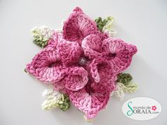 crochet flower ~ free tutorial. Site is in Portuguese, but pictures are enough to be able to make the flower.  At http://croche10.blogspot.com.br/2012/11/pap-da-flor-dupla-estrela.html