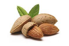 L'huile d'amande douce extraite du noyau, est utilisée depuis l'Antiquité par les femmes égyptiennes pour la pratique des massages. Elle est aujourd'hui considérée comme l'huile de massage par excellence. L'huile d'amande douce est connue pour ses propriétés cosmétiques, adoucissantes et hydratantes en cas de peaux fragiles et sensibles. Riche en acide gras, elle permet d'assouplir la peau et de prévenir du dessèchement lié aux agressions extérieures.