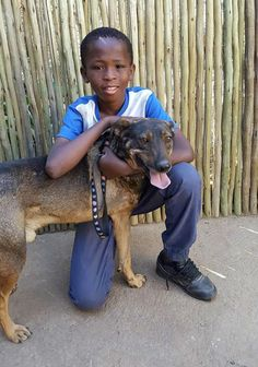 13 year old saves dog