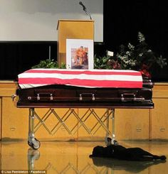 """""""Mans best friend""""  Hawkeye, a black lab dog owned by the late Navy SEAL Jon Tumilson (of Rockford, IA), refused to leave the casket containing Tumilson's body at his funeral.     Tumilson was one of 22 Navy SEALs killed in a helicopter crash earlier this month.     Tumilson reportedly referred to Hawkeye as his 'son' - and indeed, the dog led the family in procession at the service.     Then, as the family sat down, Hawkeye walked over to the casket, heaved a sigh and lay down beside it."""