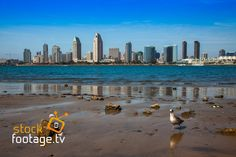 Beautiful #SanDiego #USA #Stockfootage on our website #filmmaking #HD #4K #filmproduction #filmediting #filming