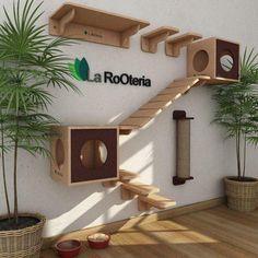 Animal Room, Hotel Gato, Cat Hotel, Cat Walkway, Cat Wall Furniture, Furniture Ideas, Cat Wall Shelves, Cat House Diy, Tiny House